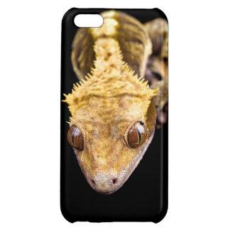 Reptil nah oben auf schwarzem Hintergrund Hülle Für iPhone 5C