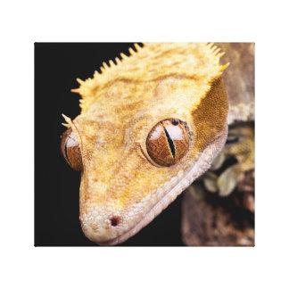 Reptil nahe dem Wasser nah oben auf schwarzem Leinwanddruck