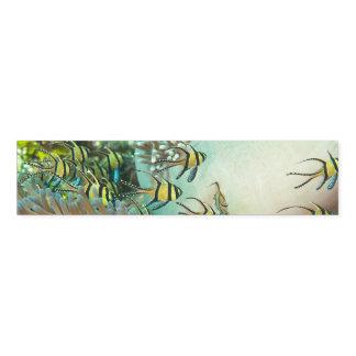 Reticulate Dascyllus Servietten-Bänder (Set von Serviettenband