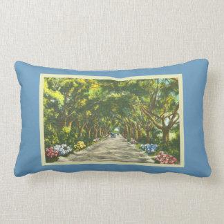 Retro blaue landschaftliche Straße Floridas largo Lendenkissen