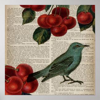 Retro botanische rote Kirsche des französischen Poster