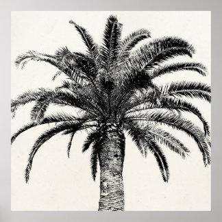 Retro tropische Insel-Palme in Schwarzweiss Poster