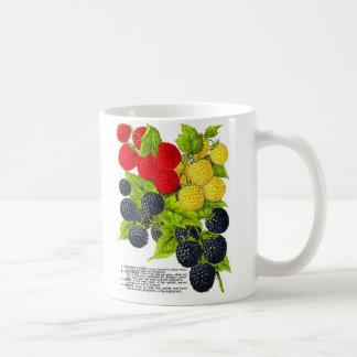 Retro Vintage Frucht-Beeren-BlackBerry-Vielzahl Kaffeetasse