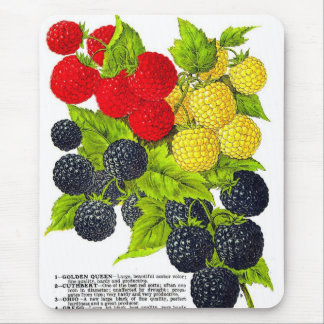 Retro Vintage Frucht-Beeren-BlackBerry-Vielzahl Mousepads