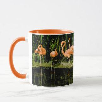 Retro Vintage rosa Flamingokaffee-Tasse Tasse