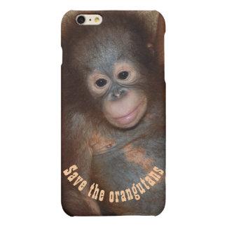 Retten Sie den Orang-Utans Dschungel-wild lebende