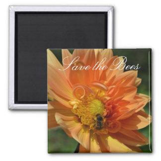 Retten Sie die Bienen… Pfirsich-Dahlie-Magnet Quadratischer Magnet