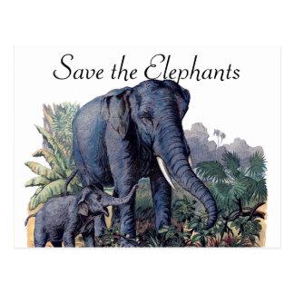 Retten Sie die Elefanten Postkarte