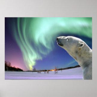 Retten Sie die gefährdeten polaren Bären Posterdrucke