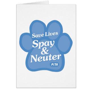 Retten Sie die Leben, Spay u. neutralisieren Sie Karte