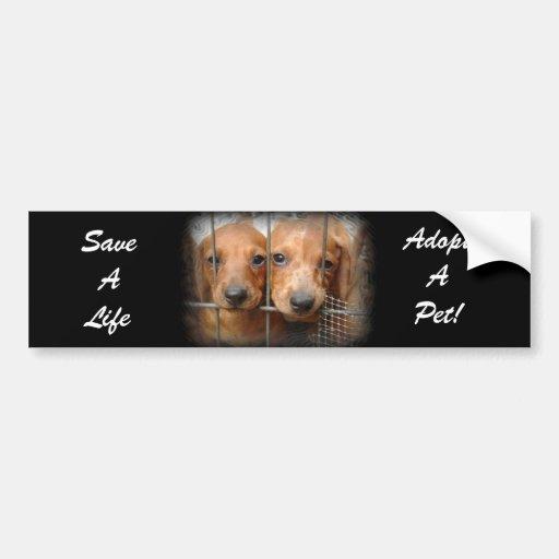 Retten Sie ein Leben adoptieren einen Haustier-Aut Auto Sticker