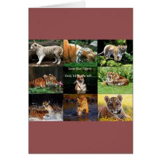 retten Sie Tiger Karte