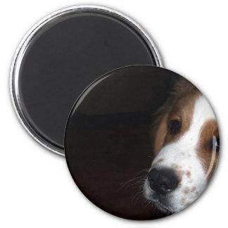 Rettungs-Hundefreund-Schwarz-Hintergrund Runder Magnet 5,1 Cm