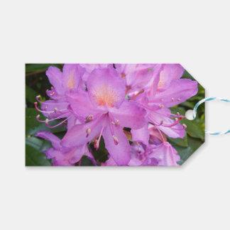 Rhododendron-Blumen-Geschenk-Umbauten Geschenkanhänger