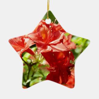 Rhododendron Keramik Stern-Ornament