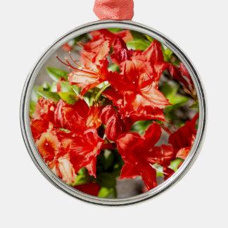 Rhododendron Silbernes Ornament