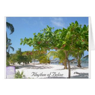 Rhythmus von Belize Karte