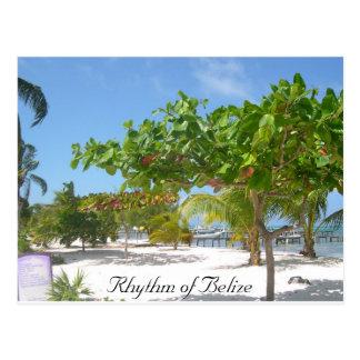 Rhythmus von Belize Postkarte