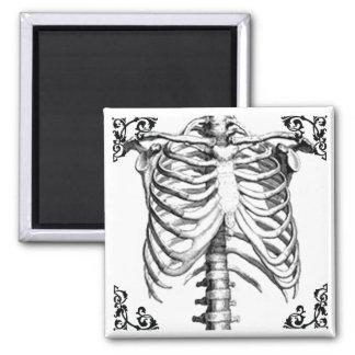 Ribcage Skeleton gotischer Magnet Quadratischer Magnet