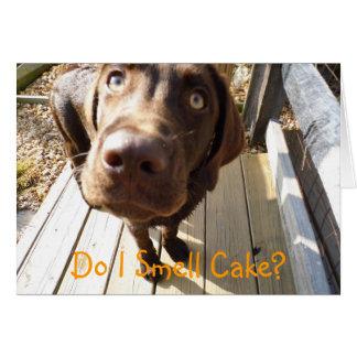 Rieche ich Kuchen? Schokoladen-Labrador-Gruß-Karte Grußkarte