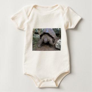 Riesige Schildkröte Galapagos-Inseln Baby Strampler