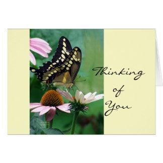 Riesiger Frack-Schmetterling auf Blumen Karte