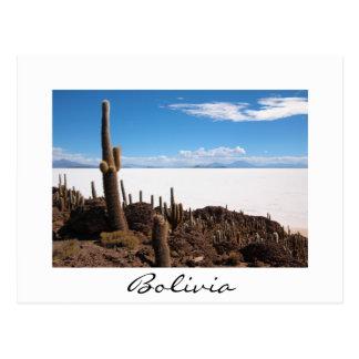Riesiger Kaktus an der Grenzpostkarte Salars de Postkarte