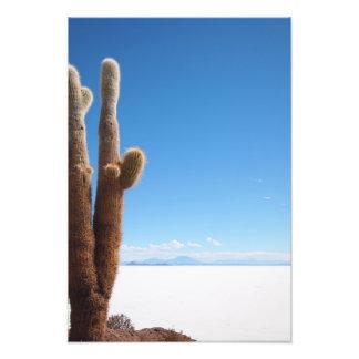 Riesiger Kaktus auf dem Fotodruck Salars de Uyuni
