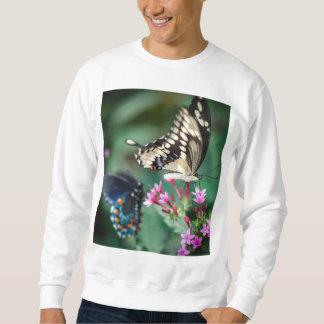 Riesiges Frack Papilio Cresphontes Sweatshirt