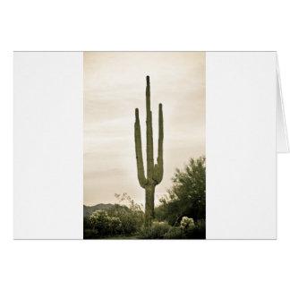 Riesiges Saguaro Sonoran Wüsten-Porträt Karte
