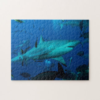 Riff-Haifisch-Great Barrier Reef Korallenmeer Puzzle