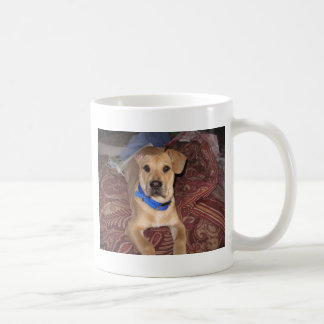 Riley-Kragen Kaffeetasse