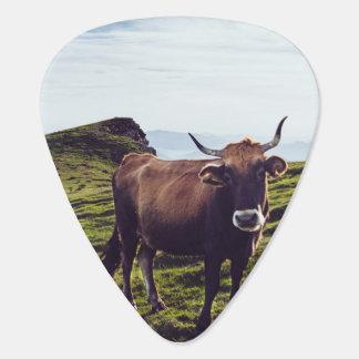 Rinderkuh auf schöner Landschaft Plektron