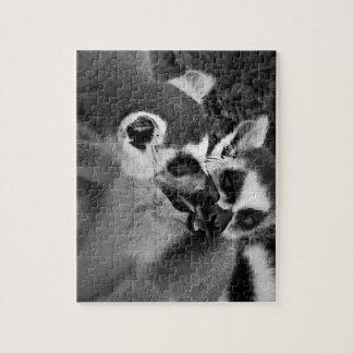 Ring angebundene Lemurpaare, die Wassermelone Puzzle