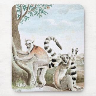Ring-Angebundene Lemurs-Illustration Mousepad