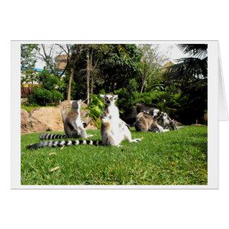 Ring angebundene Lemurs und ihre Babys Karte