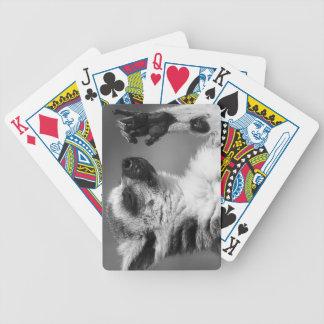 Ring angebundenes Lemur-Spielen Bicycle Spielkarten