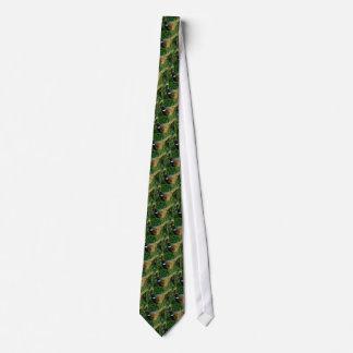 Ring-necked Fasan Individuelle Krawatten