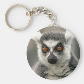 Ring-Schwanz Lemur Schlüsselanhänger