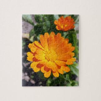 Ringelblumen-Blume Puzzle