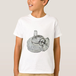 RingHolderDiamondRing100711 T-Shirt