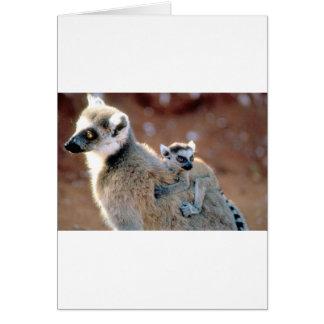 Ringtail-Lemur und Baby Karte