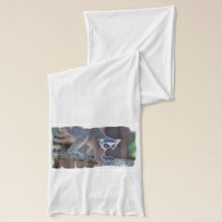 Ringtailed Lemurs Schal