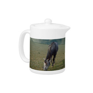 Roan Pferd, das in der Koppel weiden lässt,