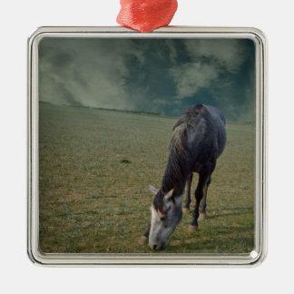 Roan Pferd, das in der Koppel weiden lässt Silbernes Ornament