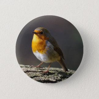 Robin-Abzeichen Runder Button 5,7 Cm