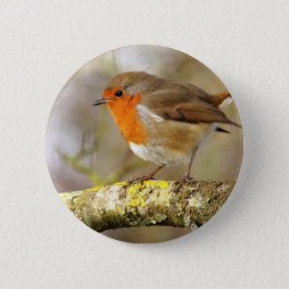 Robin auf Niederlassung Runder Button 5,7 Cm