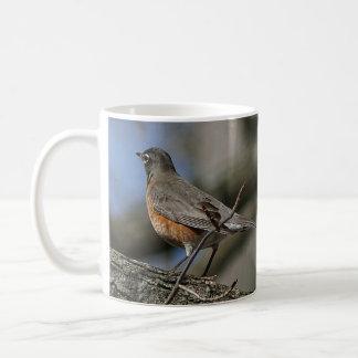 Robin, Becher Kaffeetasse
