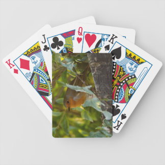 Robin Bicycle Spielkarten