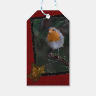 Robin-Geschenkumbauten Geschenkanhänger